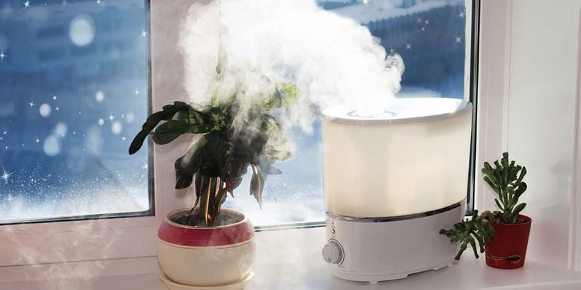 The Benefits of a Humidifier This Winter Season
