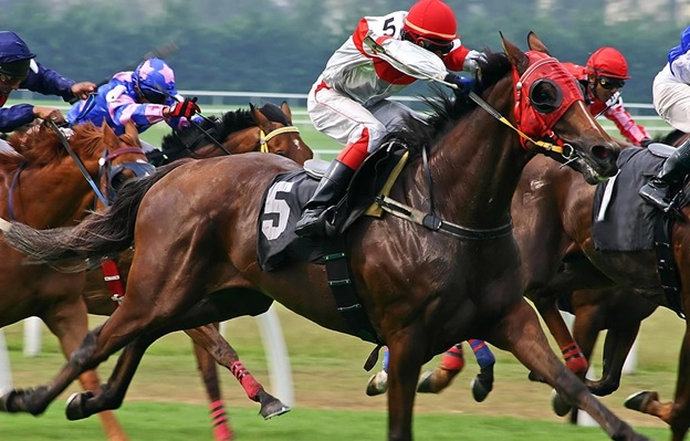 6 Things You Should Know About Thoroughbred Racing