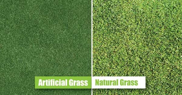 What Is The Difference Between Synthetic Grass And Artificial Grass?