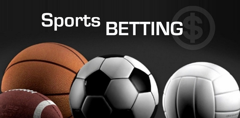 The fun in Online Sports Betting Now