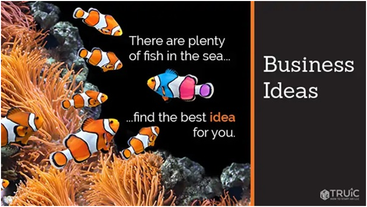 Choose The Right Business Idea
