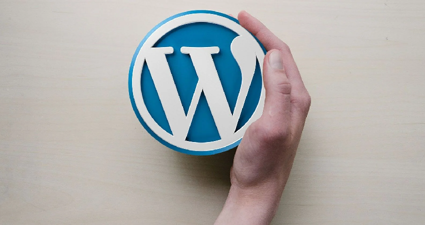 Useful Tips Regarding Earning On WordPress