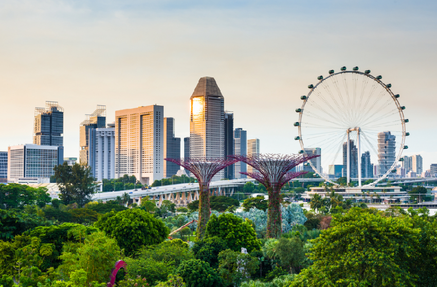 Relocating Or Transferring To Singapore