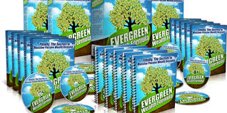 Strong Points about Evergreen Wealth Formula 2.0