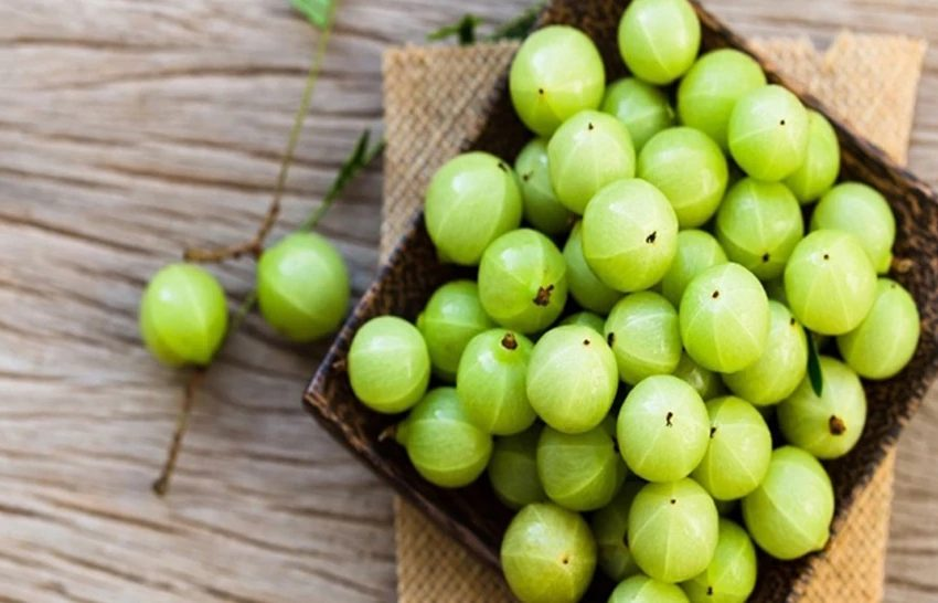 Benefits of Adding Green Fruit Indian Gooseberry In Your Diet