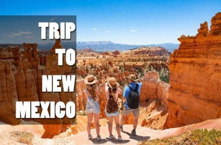 Plan your unforgettable trip to New Mexico