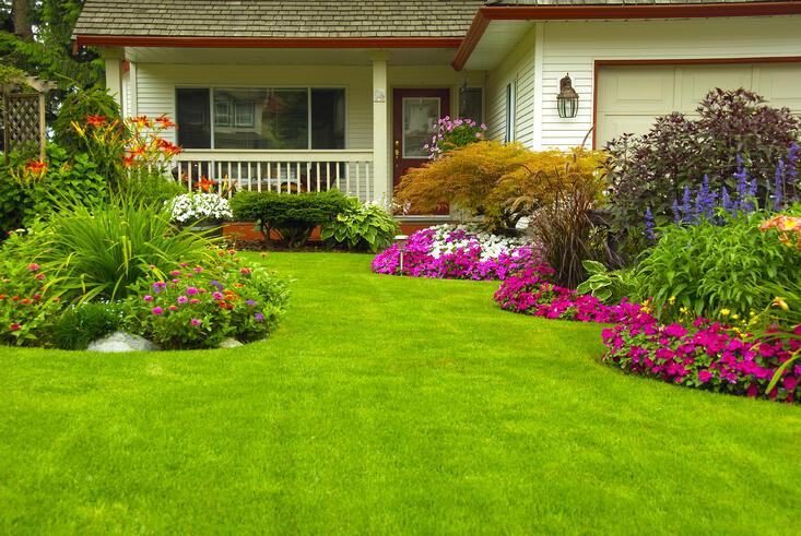 Keys to a Healthy Lawn