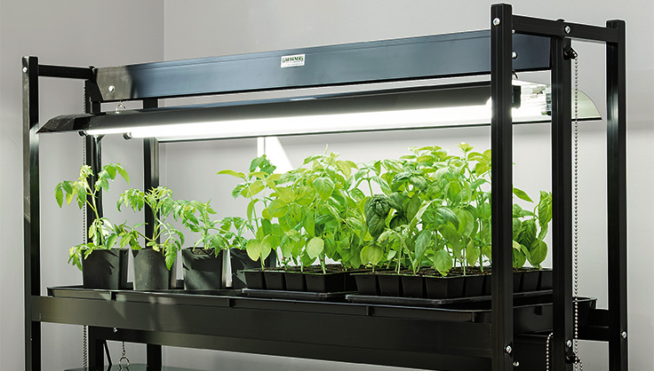 Benefits of Using the Grow Tent Kits for Gardening