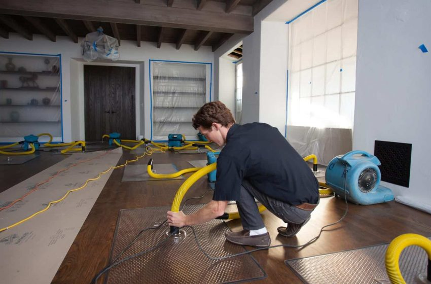 A Guide to Water Damage Services