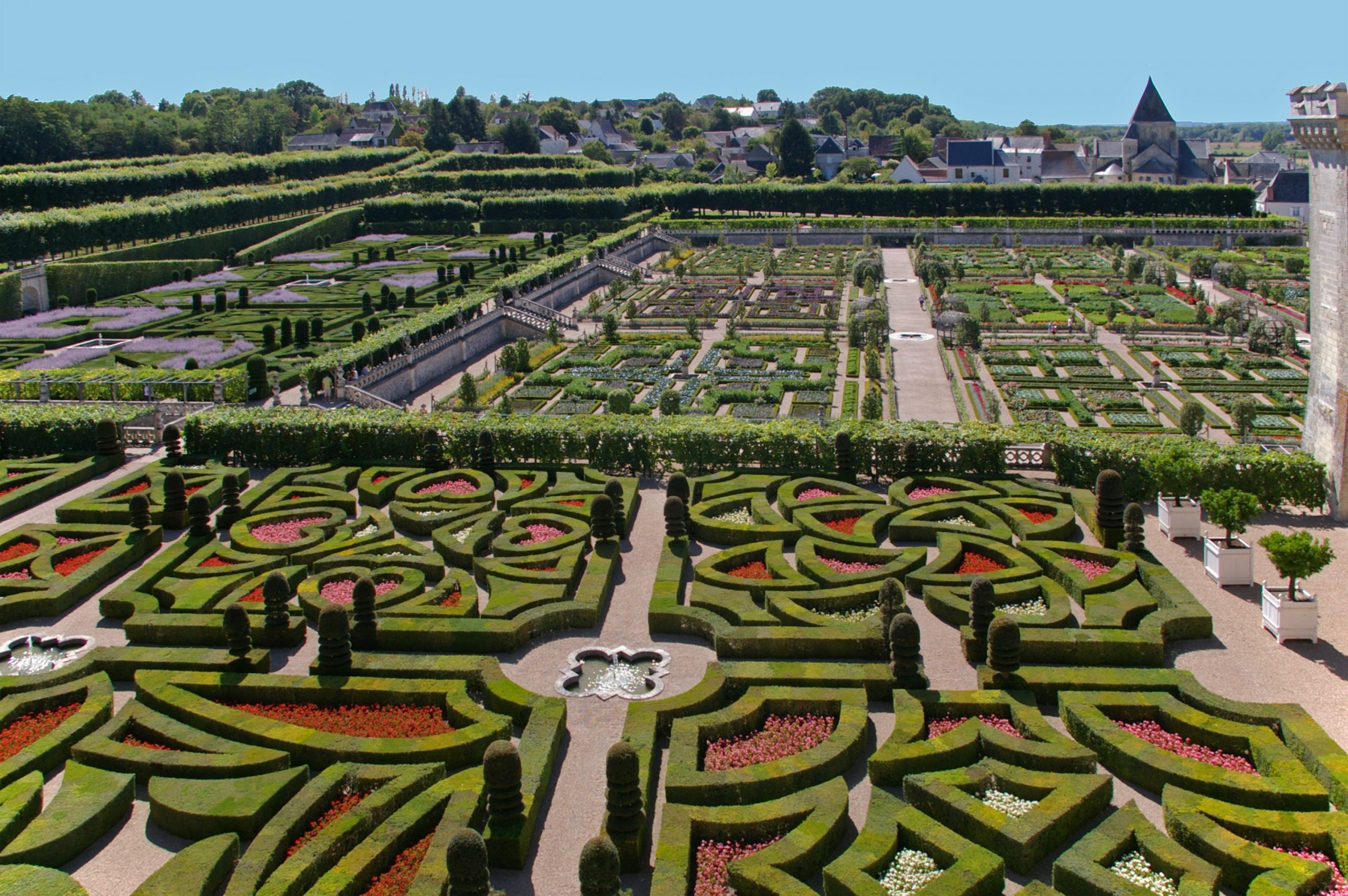The development of a successful garden!